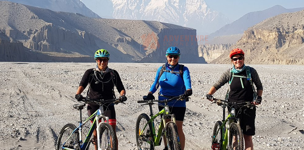 Mountain Bike Upper Mustang